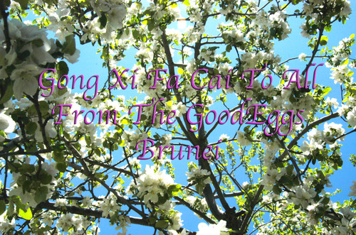 Apple_blossoms_original_size
